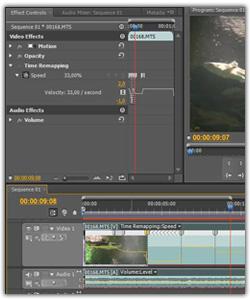Adobe Premiere Pro Cs5.5 И Cs6. Хитрости Монтажера